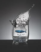 Nantucket whale whiskey glass  -SOLD-